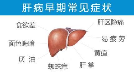 肝病早期有哪些症状 肝病早期的八大症状表现